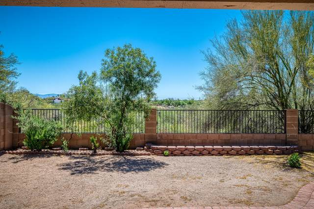 1965 W Cholla Vista Drive, Tucson, AZ 85704 (MLS #22013016) :: The Property Partners at eXp Realty