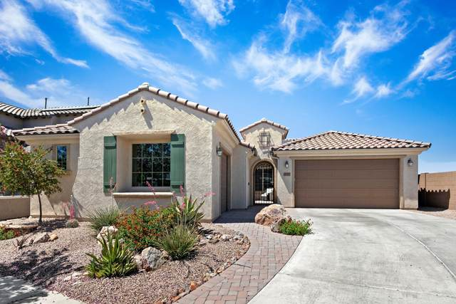 11053 E Lone Pine Place, Tucson, AZ 85747 (#22013038) :: Long Realty - The Vallee Gold Team