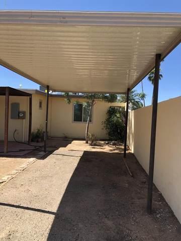 3901 S Queen Palm Drive, Tucson, AZ 85730 (#22013076) :: Gateway Partners | Realty Executives Arizona Territory