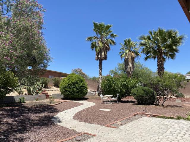 6882 N De Chelly Loop, Tucson, AZ 85741 (#22013100) :: The Local Real Estate Group | Realty Executives