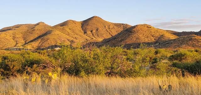 11201 E Camino Aurelia, Vail, AZ 85641 (#22013126) :: The Josh Berkley Team