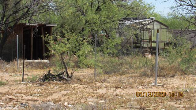15254 W Ajo Highway, Tucson, AZ 85735 (MLS #22013262) :: The Property Partners at eXp Realty