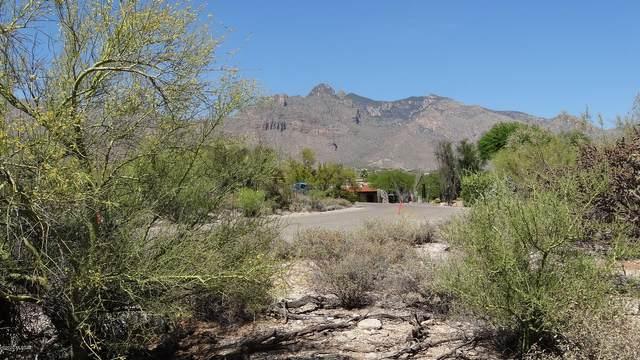 1230 E Placita De Graciela #513, Tucson, AZ 85718 (#22013278) :: The Local Real Estate Group | Realty Executives