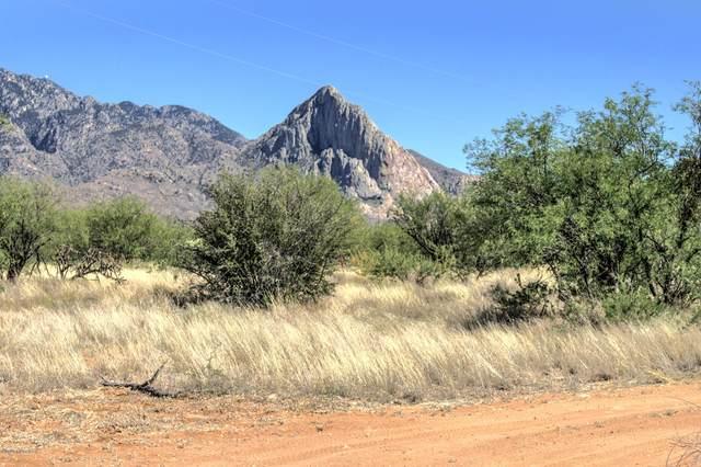 225 W Hawk Way, Amado, AZ 85645 (#22013402) :: Gateway Partners | Realty Executives Arizona Territory