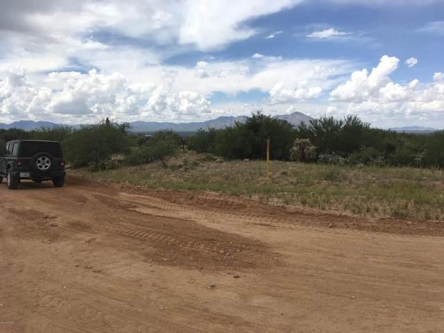 16065 W Ravinia Avenue #99, Tucson, AZ 85736 (#22013433) :: The Local Real Estate Group   Realty Executives