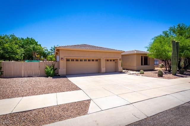 11732 N Desert Holly Drive, Oro Valley, AZ 85737 (#22013653) :: Long Realty Company