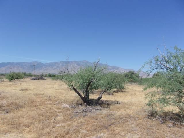 Powerline Road, Safford, AZ 85546 (#22013748) :: Realty Executives Tucson Elite