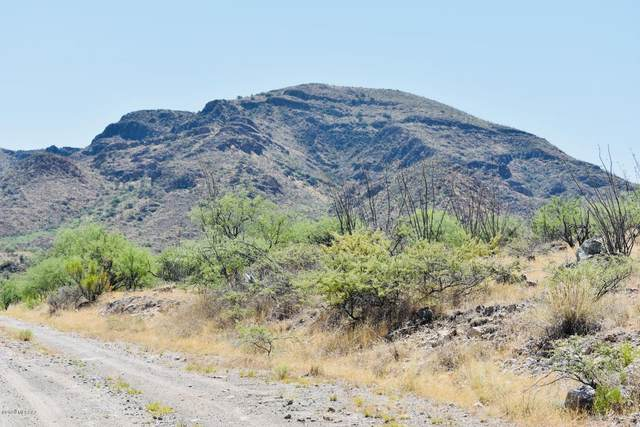 TBD Silver Mine Trail #56, Tubac, AZ 85646 (MLS #22013789) :: The Property Partners at eXp Realty