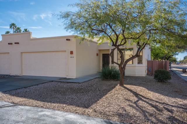 8142 N Peppersauce Drive, Oro Valley, AZ 85704 (#22013805) :: Long Realty Company