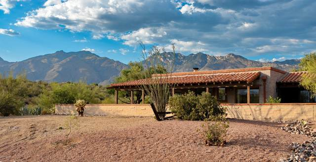 4851 N Territory Avenue, Tucson, AZ 85750 (#22013940) :: Long Realty - The Vallee Gold Team