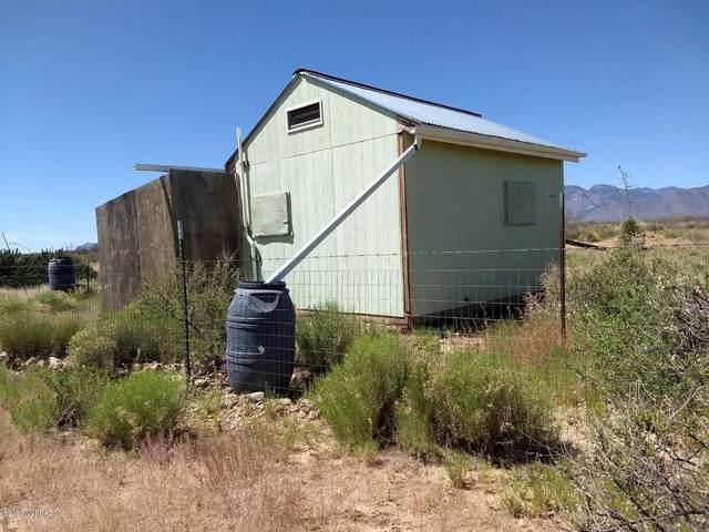 1770 S B Lee Lane S, Portal, AZ 85632 (MLS #22014080) :: The Property Partners at eXp Realty