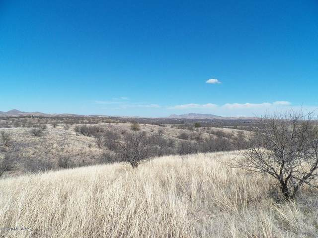 TBD S Ruby Road 38000BL, Arivaca, AZ 85601 (#22014302) :: The Josh Berkley Team