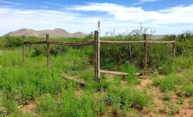 10 Ac E Doe Ranch Road #56, Pearce, AZ 85625 (#22014432) :: The Local Real Estate Group | Realty Executives