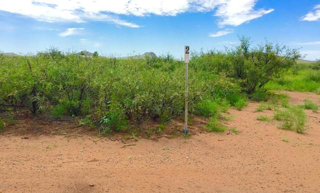 20 Ac E Doe Ranch Road #57, Pearce, AZ 85625 (#22014439) :: The Local Real Estate Group | Realty Executives