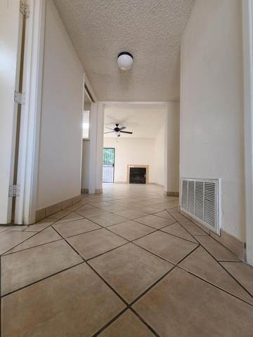 320 W King Road, Tucson, AZ 85705 (#22014463) :: Long Realty - The Vallee Gold Team