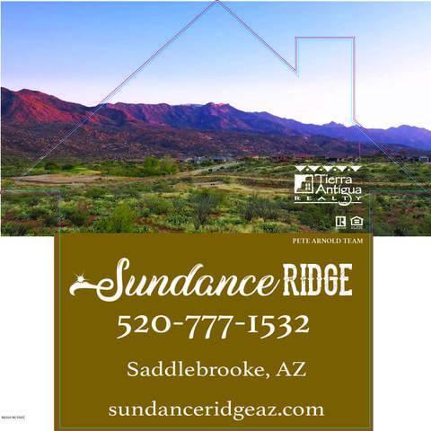 66407 E Sundance Place, Tucson, AZ 85739 (#22014516) :: Long Realty - The Vallee Gold Team