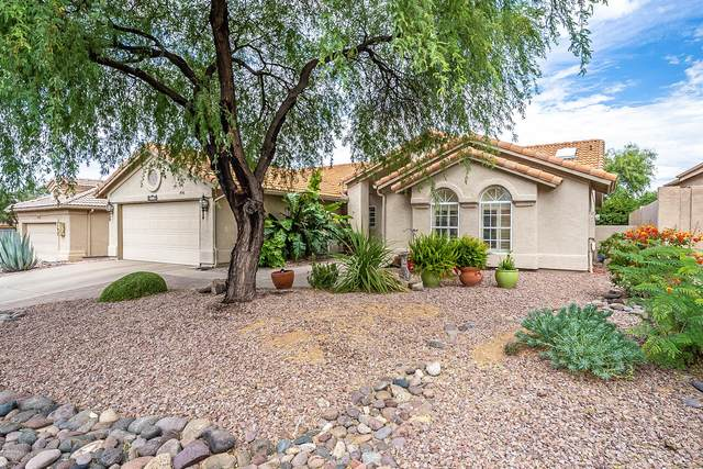 38220 S Rolling Hills Drive, Tucson, AZ 85739 (#22014529) :: Long Realty - The Vallee Gold Team