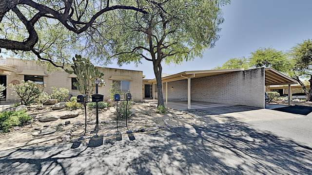 65 E Mediterranean Drive, Tucson, AZ 85704 (#22014844) :: Long Realty - The Vallee Gold Team