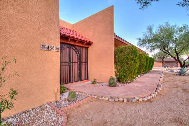4360 N Banyon Tree Drive, Tucson, AZ 85749 (#22015166) :: Long Realty - The Vallee Gold Team