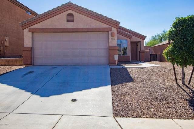 7966 N Jewelflower Drive, Tucson, AZ 85741 (#22015191) :: Long Realty - The Vallee Gold Team