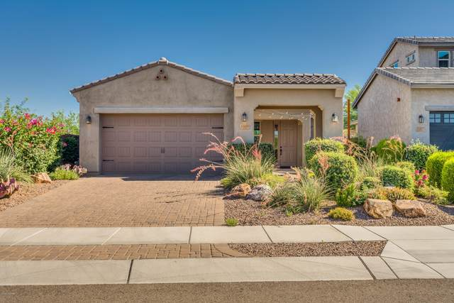 13409 N Silver Cassia Place, Oro Valley, AZ 85755 (#22015217) :: Long Realty - The Vallee Gold Team
