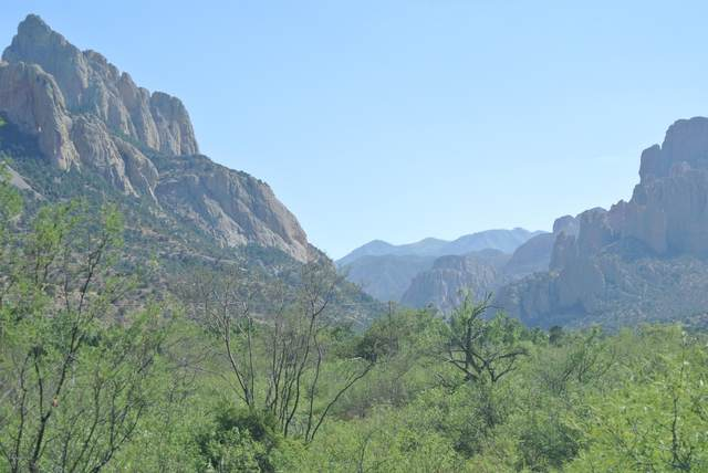 0 Cathedral Rock Road, Portal, AZ 85632 (MLS #22015310) :: The Property Partners at eXp Realty