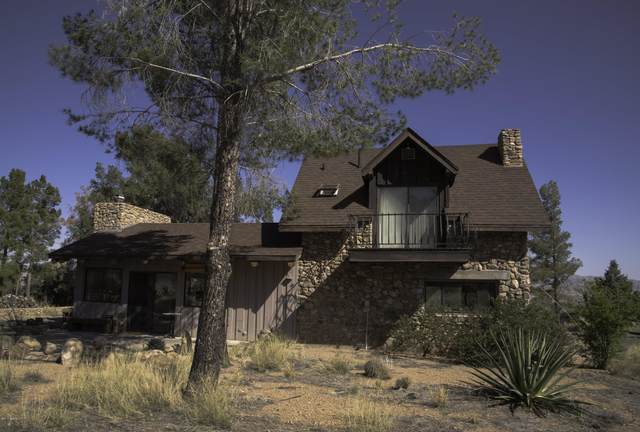 729 W Lone Pine Trail, Portal, AZ 85632 (MLS #22015315) :: The Property Partners at eXp Realty
