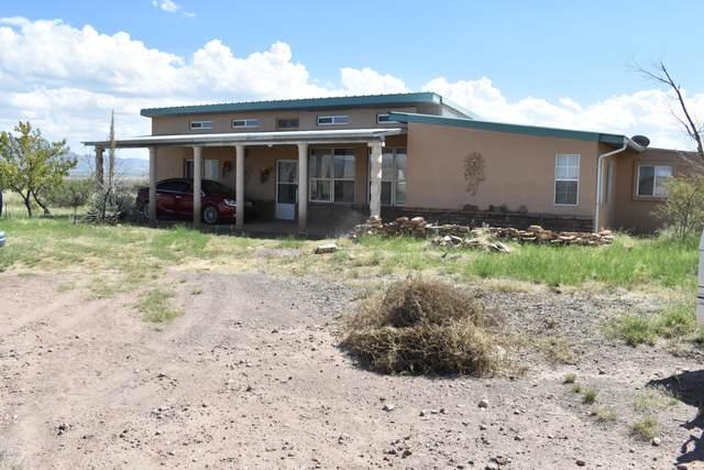 8397 E Rocksprings Road, Portal, AZ 85632 (MLS #22015317) :: The Property Partners at eXp Realty