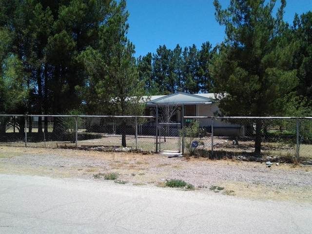 393 E Old Mill Road, Benson, AZ 85602 (MLS #22015353) :: The Property Partners at eXp Realty