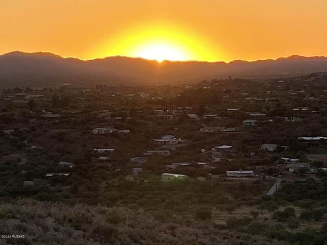 Parcel 222-33-058H, Tucson, AZ 85739 (MLS #22015500) :: The Property Partners at eXp Realty