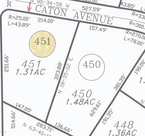 15810 S Caton Avenue S #451, Tucson, AZ 85736 (#22015580) :: Keller Williams