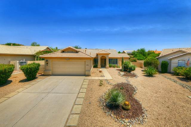 63910 E Squash Blossom Lane, Saddlebrooke, AZ 85739 (#22015691) :: Keller Williams