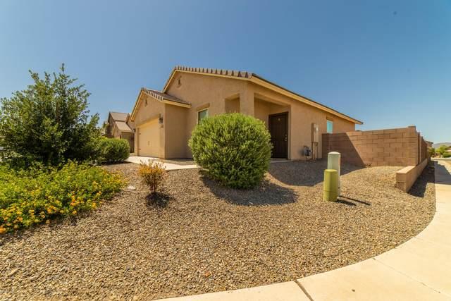 8246 W Kittiwake Lane, Tucson, AZ 85757 (#22015756) :: Long Realty - The Vallee Gold Team