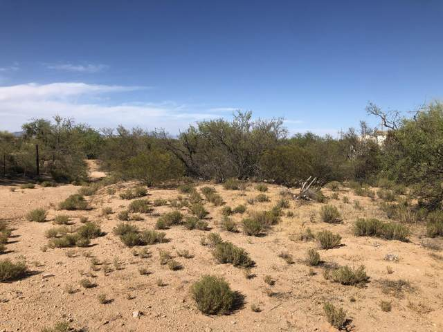 16485 W Roundup Place #50, Tucson, AZ 85736 (#22015802) :: The Josh Berkley Team