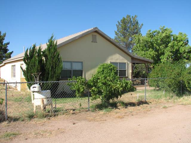 10721 N Martineau Road, Elfrida, AZ 85610 (#22015955) :: Realty Executives Tucson Elite