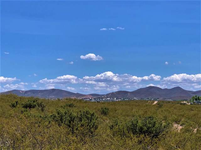 9.77 ac N Roxie Road, Tombstone, AZ 85638 (#22015970) :: Long Realty - The Vallee Gold Team