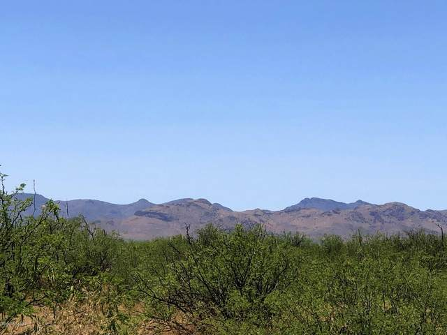 TBD N Circle I Road, Willcox, AZ 85643 (#22015986) :: Long Realty - The Vallee Gold Team