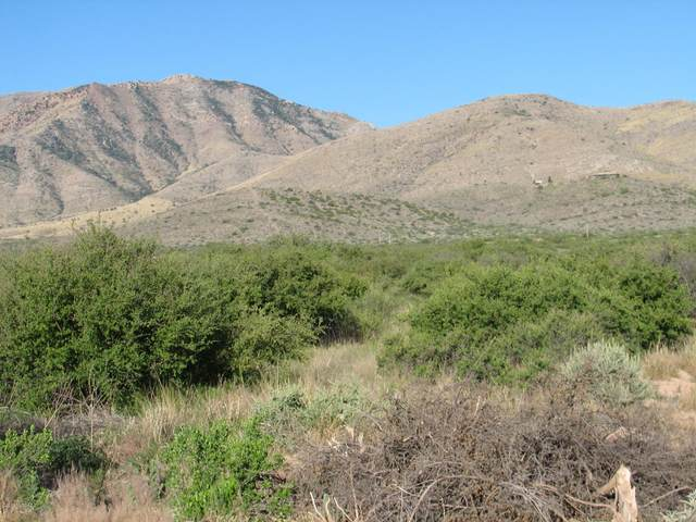 39.93 Acre Bird Of Paradise And Starview Trail, Cochise, AZ 85606 (#22016013) :: Long Realty Company