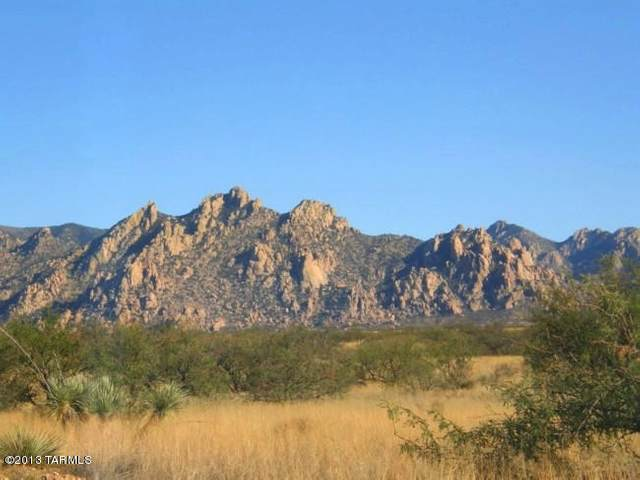 Lot 159 E Diamondback Road #159, St. David, AZ 85630 (#22016057) :: Long Realty - The Vallee Gold Team