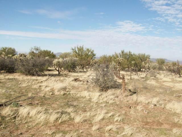 14868 W Lost Valley Loop, Tucson, AZ 85736 (#22016133) :: The Josh Berkley Team