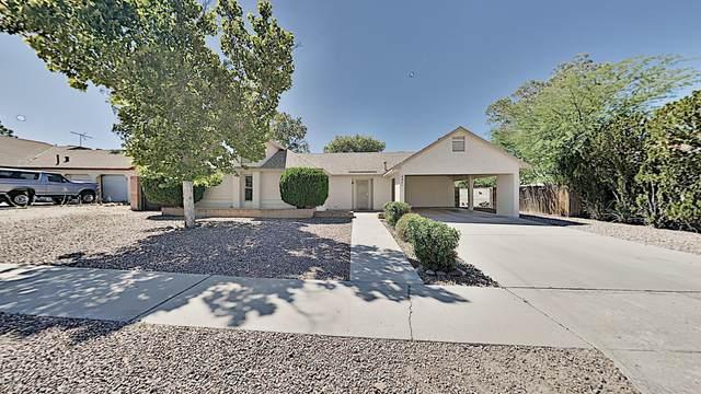 4981 W Spoonbill Drive, Tucson, AZ 85742 (#22016188) :: Tucson Property Executives