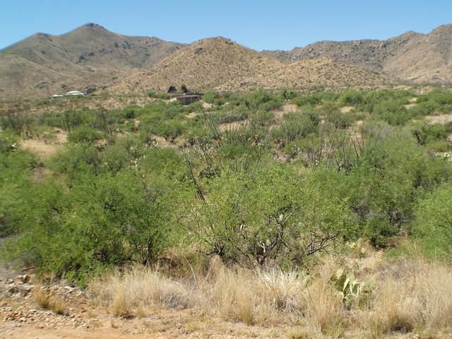 TBD E Camino Aurelia, Vail, AZ 85641 (#22016192) :: Keller Williams