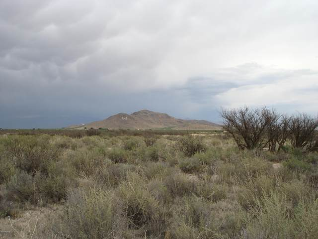 Old Stewart Rd #05, Willcox, AZ 85643 (#22016237) :: Long Realty Company