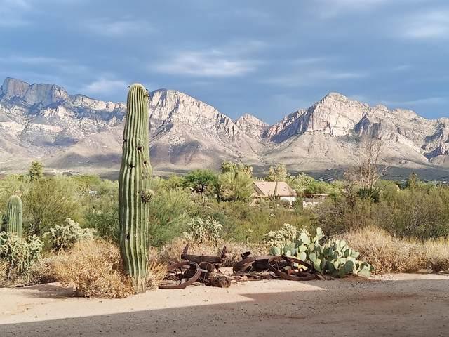 11900 N Mandarin Lane, Tucson, AZ 85737 (MLS #22016258) :: The Property Partners at eXp Realty