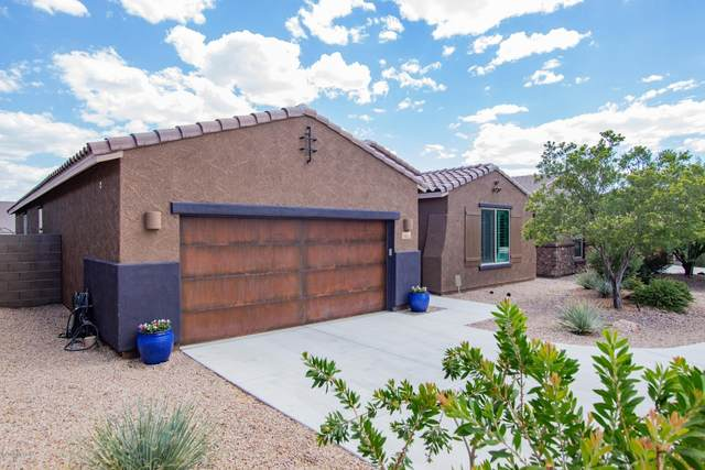 11012 N Delphinus Street, Oro Valley, AZ 85742 (#22016390) :: Keller Williams