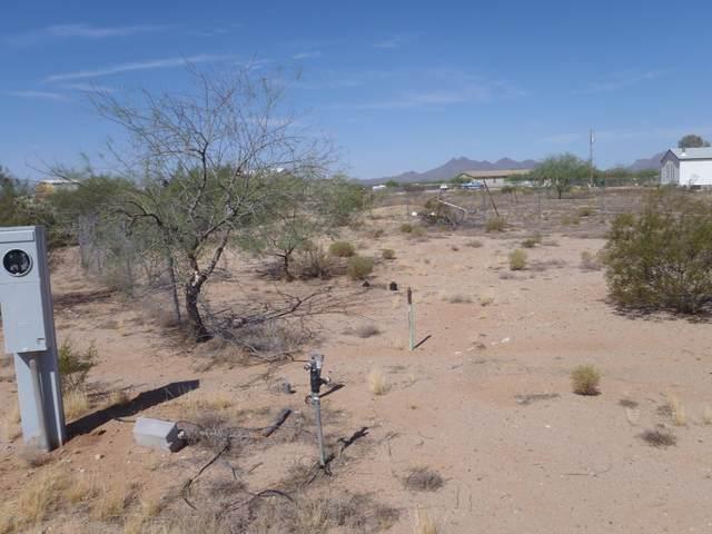 17163 W El Camino De Tres Arroyos, Marana, AZ 85653 (#22016398) :: Long Realty - The Vallee Gold Team