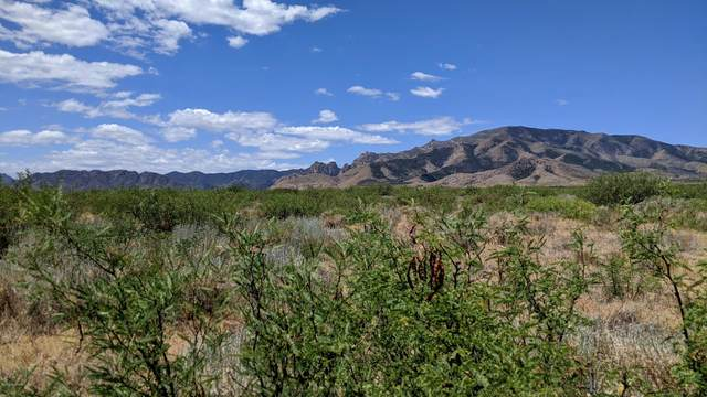10 Acres On N. Slope Along Way -, Cochise, AZ 85606 (#22016444) :: The Local Real Estate Group | Realty Executives