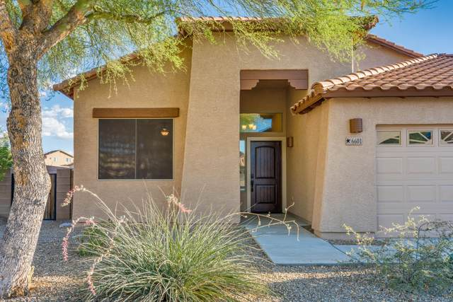 6601 W Sydney Court, Tucson, AZ 85757 (#22016496) :: Long Realty - The Vallee Gold Team