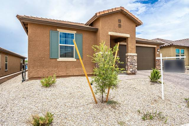 14199 E Vardo Drive, Vail, AZ 85641 (#22016605) :: Long Realty - The Vallee Gold Team