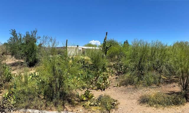 5980 N Mountain Lion Lane, Tucson, AZ 85743 (#22016649) :: The Josh Berkley Team